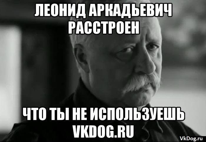 VKdog