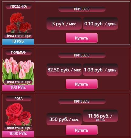 Цветочный бизнес3